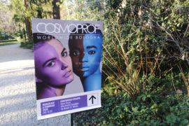 Conferenza Stampa Cosmoprof 2020 Bologna Villa Necchi Milano