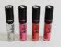 LipGloss PuroBIO Cosmetics 01 -02 - 03 -04